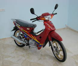 Moped TM110, 2019 il